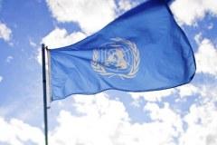 stampanje-zastava-swa-tim-izrada-zastava-zastave-organizacija-UNDP